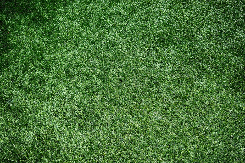 Carpets Bolton - did you know we stock artificial grass?