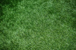 Carpets Bolton – did you know we stock artificial grass?