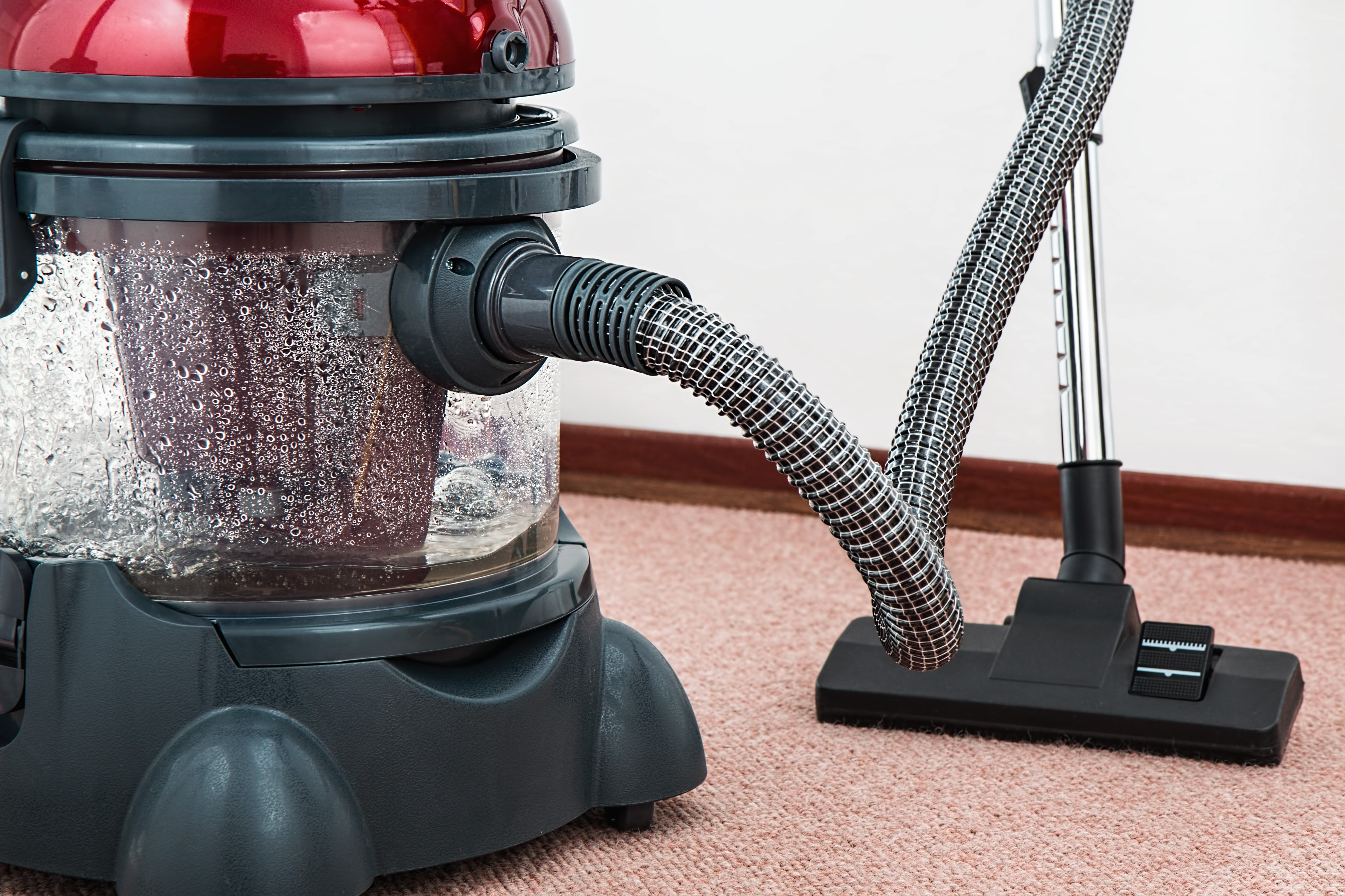 Our top reasons why you should take the time to get your carpet professionally cleaned!